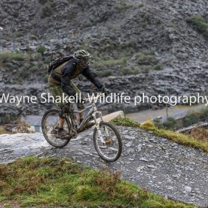 Dandy on the Antur Stiniog downhill course