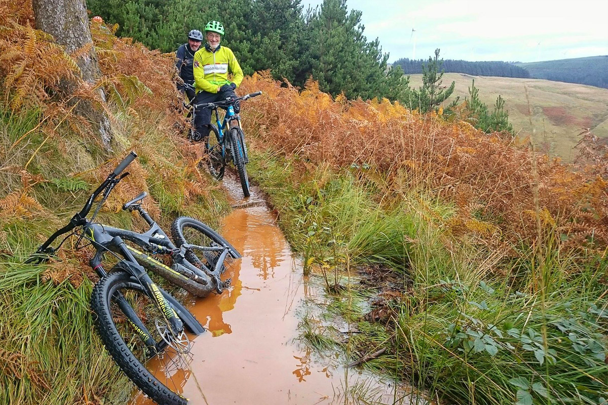 Bike swallowing swamp