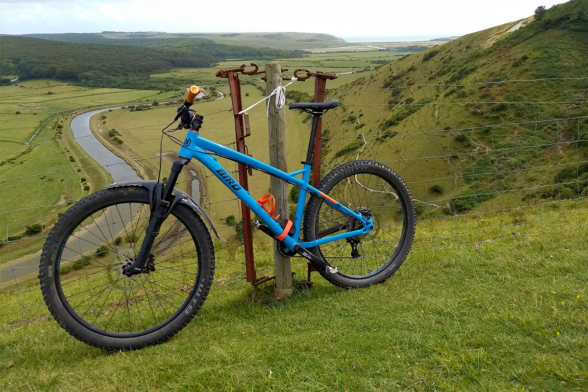Bird Zero AM on the South Downs