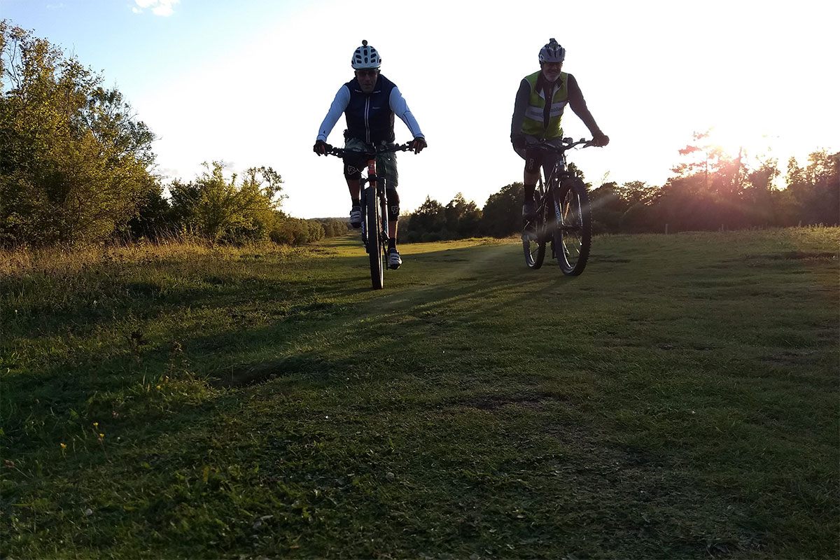 Tony and Lloyd silhouettes on Mickleham Gallops
